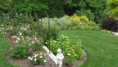 Vivai daniele todeschini progettazione costruzione giardini for Costruzione giardini